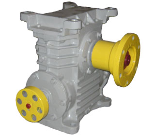 Worm Vertical Reducer